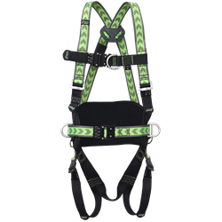 Body harness 2 attachment points with belt and automatic buckles